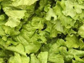 Salad & wrap products recalled for Cyclospora