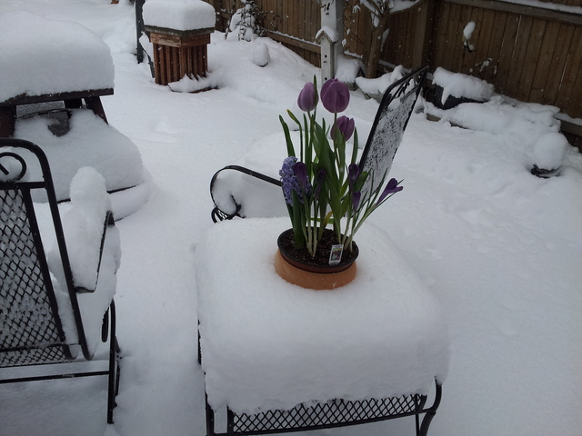 we had. August 15th, 2013 2014. Snow Predictions for 2013 Indiana
