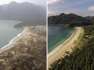 PICS: Tsunami-struck area, 10 years later