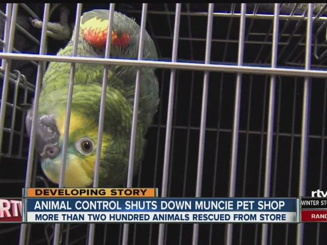 The Pet Food Shop Hamilton