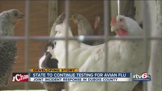 Indiana Bird Flu Response Covers Huge Area
