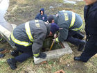 Crews rescue dog from culvert