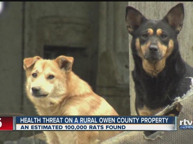Health threat on rural Owen County property