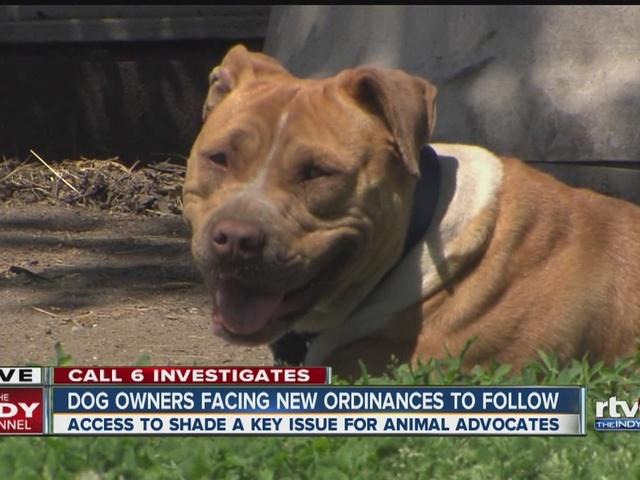 Dog owners facing new ordinances to follow