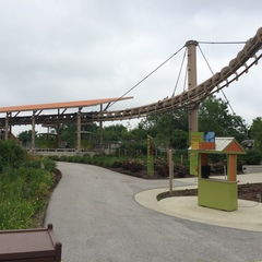 Troubled Skyline ride to reopen at Indy Zoo