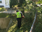 City cleans up vegetation after Call 6 inquiry
