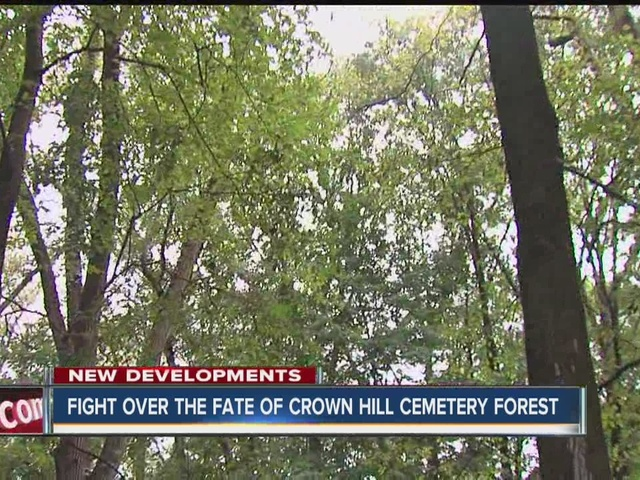 Fight over fate of Crown Hill Cemetery Forest