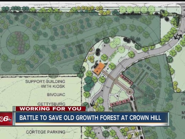 Fight to save the forest at Crown Hill