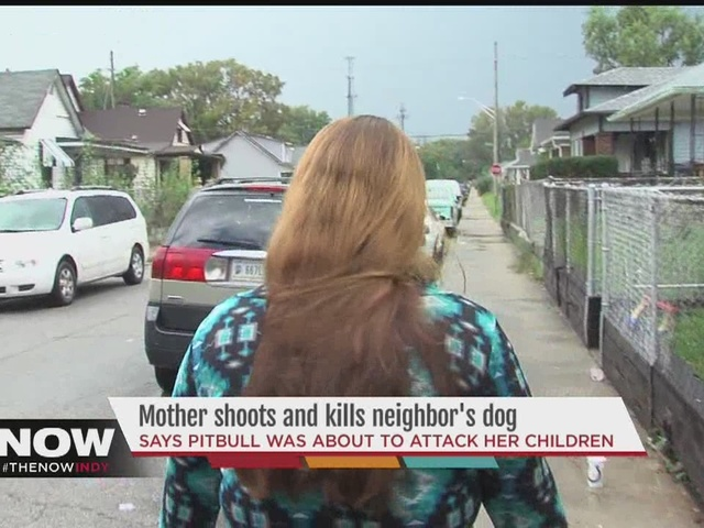 Indianapolis mom takes matters into her own hands, kills dog charging at kids
