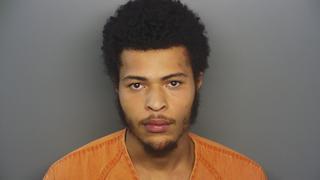 Deputies foil car-break-in, make arrest