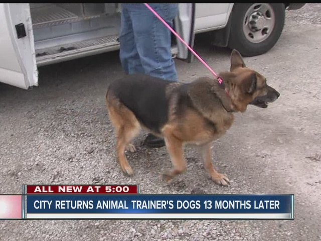 City returns animal trainer's dogs, trainer agrees to drop lawsuits