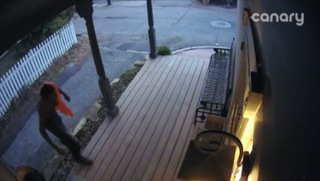 Prowlers caught on camera peeking into homes