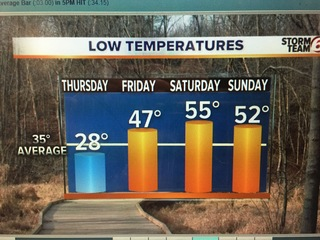 Cold tonight. Much warmer 7Day forecast!