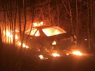 Stolen car found engulfed in flames