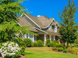 Plant shade trees and grow some HVAC savings