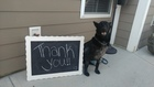 Fundraiser held for injured Zionsville K9