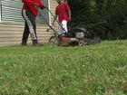 Teens volunteer to remove blight in neighborhood