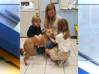 Stolen dog reunited w/ family three years later