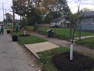 PICS: Volunteers help clean Indy neighborhood