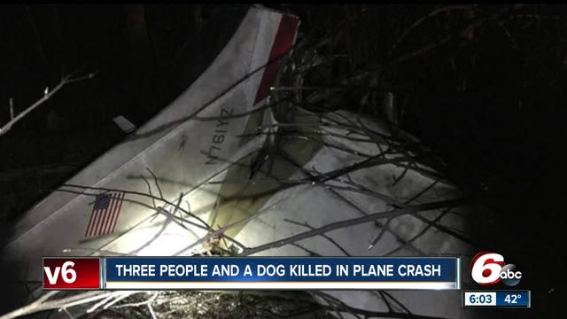 Dog survives plane crash that kills 3 persons, second canine
