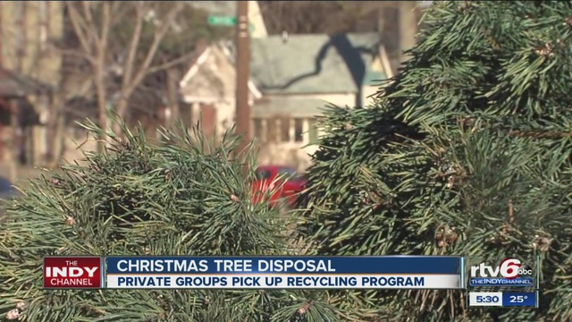 A guide to getting rid of your Christmas tree in Indianapolis ...