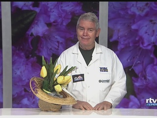 Dr. Dirt: Season has affected size of plants