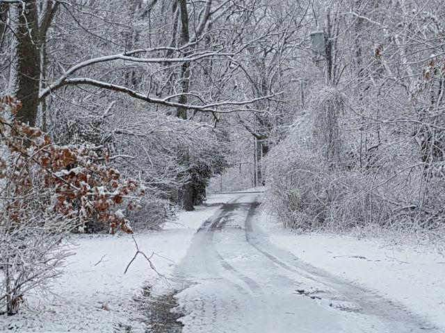 Muncie Snowstorm Couples Session by Megan Renee Photography  Muncie Snow
