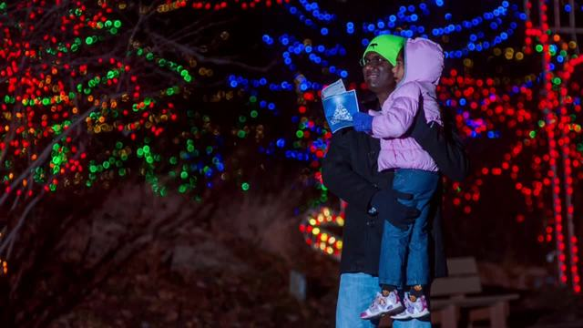 Help Indianapolis Zoo's Christmas at the Zoo reach No. 1 ...