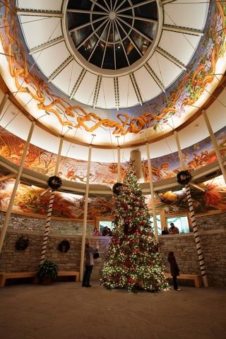 PHOTOS: Christmas at the Zoo - V1 News Gallery