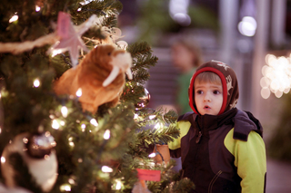 Time is running out to vote for Indy Zoo lights