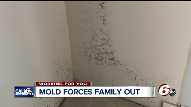 Mold forces family out of Brownburg home for years