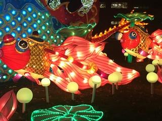 PHOTOS: Chinese Lantern Festival