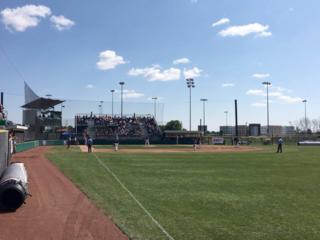 Westfield baseball field gets new turf