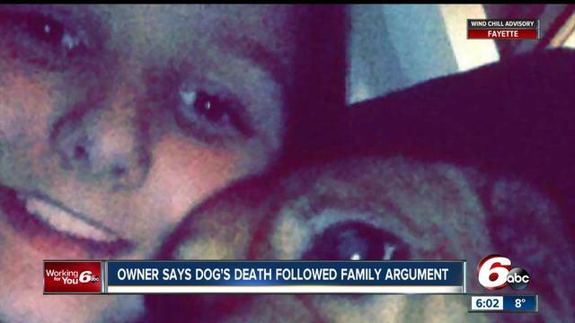 Abandoned dog left to die in sub-zero temperatures