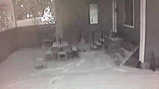 Man caught peeping, mooning in Indy neighborhood
