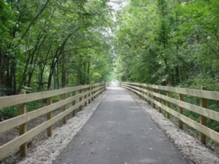 Tree clearing begins for Midland Trace Trail