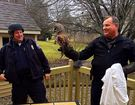 Police capture owl that invaded Fishers home