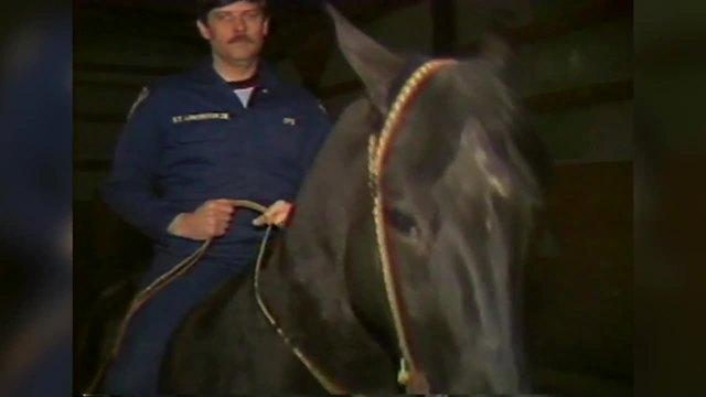 IMPD Mounted Patrol 021983
