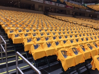 PHOTOS: Pacers pride on display in Indy!