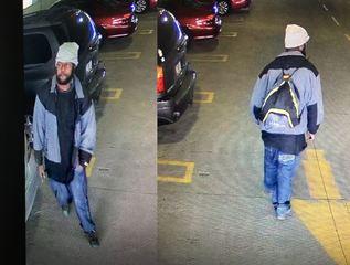 Man steals marked park ranger patrol car from VA