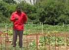Indy church creates garden to combat food desert