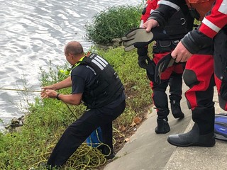 Man dies after being pulled out of White River