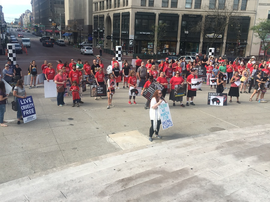 Indiana Animal Alliance Rights Alliance gather at Monument Circle to march for a...