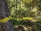 3 adults killed in Morgan Co. crash, 2 kids hurt