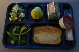 Hoosier parents concerned over school lunches
