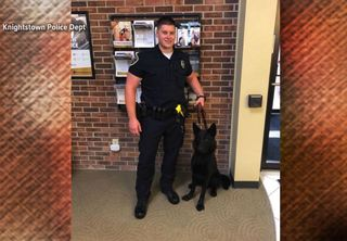 Knightstown police to add new K-9 officer