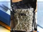Police seize 60 pounds of marijuana, $110,000